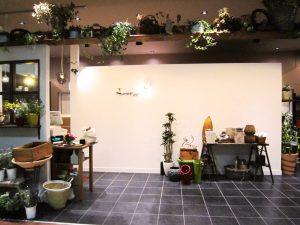 長崎市-蒲公英